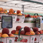 Niagara Farm Market Stall a Local Favourite