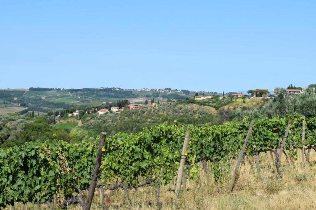 Villa Le Corti Tuscany Italy, the wine cellars and the fabulous Chianti Classico wines