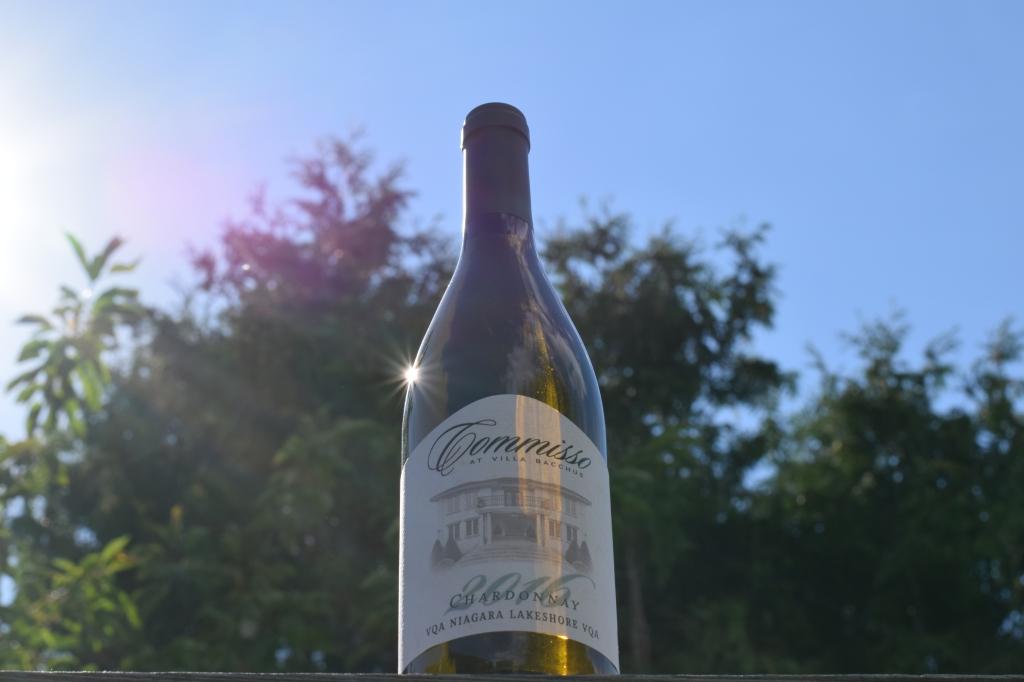 Villa Bacchus Winery Wines