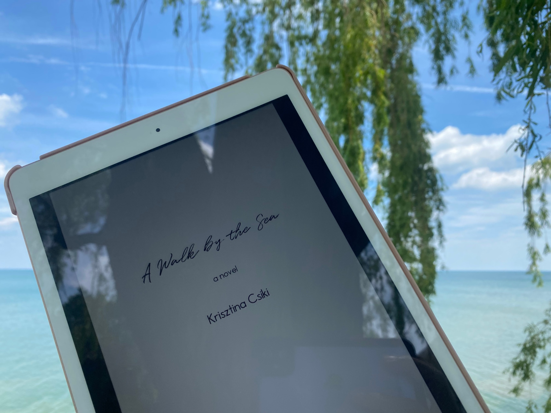 Book Review A Walk by the Sea by Krisztina Csiki