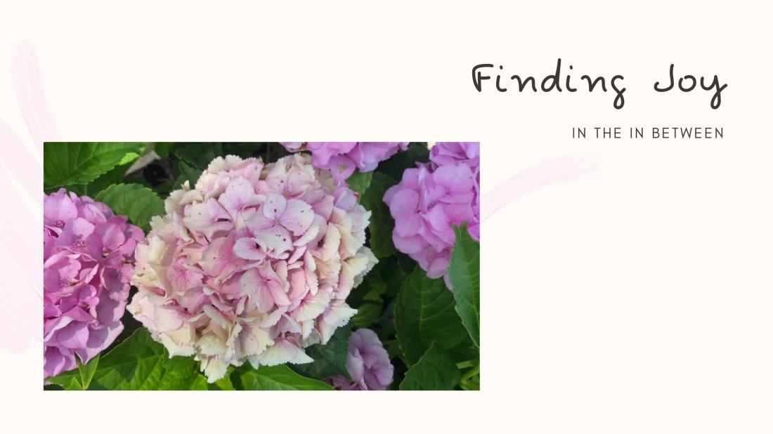 Finding Joy in the inbetween